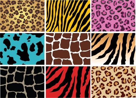 dierlijke huid  Vector Illustratie