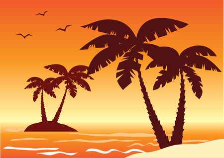 tropical illustration with palms, ocean and sunset Vectores