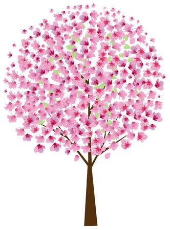 cerezo en flor Ilustración de vector