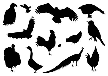 silhouettes of different birds Vettoriali