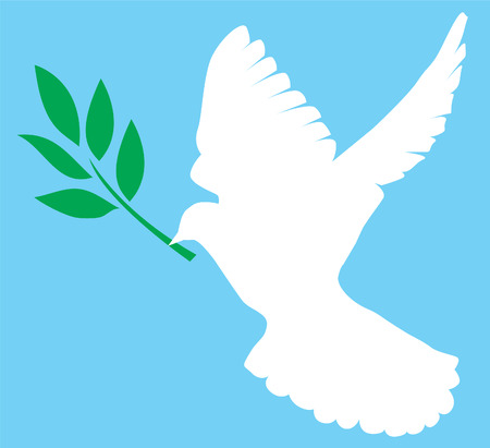 white dove with olive branch Vector