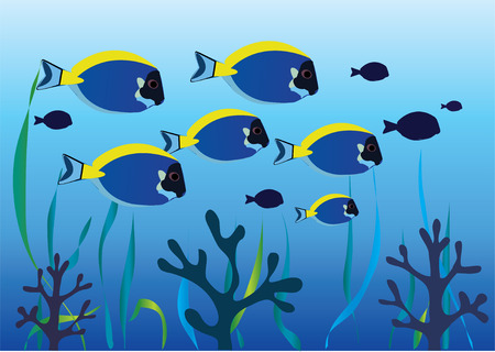 tropical fishes underwater Stock Vector - 8497477