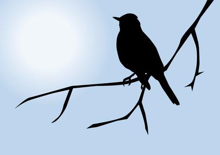 Bird silhouet Stock Illustratie