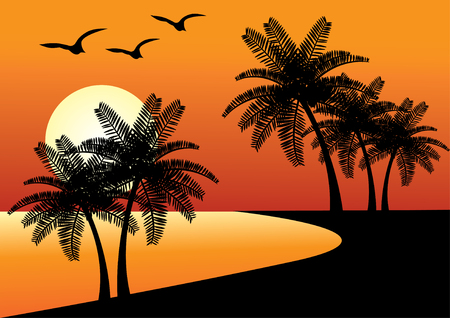 beach with palms and ocean and sunset Vector