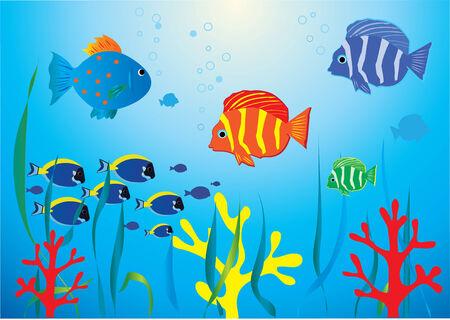 水中の熱帯魚  イラスト・ベクター素材