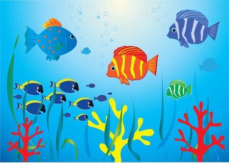 tropical fishes underwater Stock Vector - 8557932