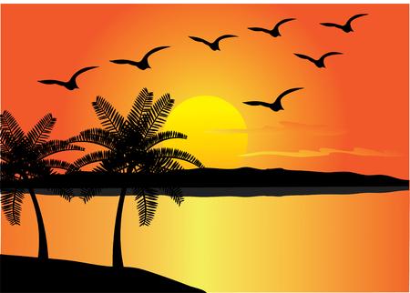 tropical beach with birds