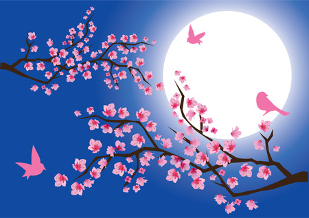 cherry blossom with birds and moon background