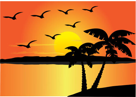 beach sunset: beach with palms, sunset and birds Illustration