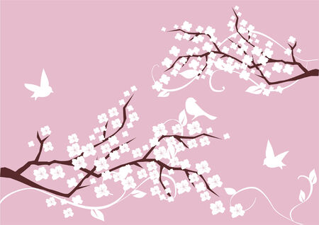japanese style: blossom branches with white flowers and birds Illustration