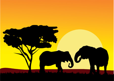 art painting: african landscape with elephants Illustration
