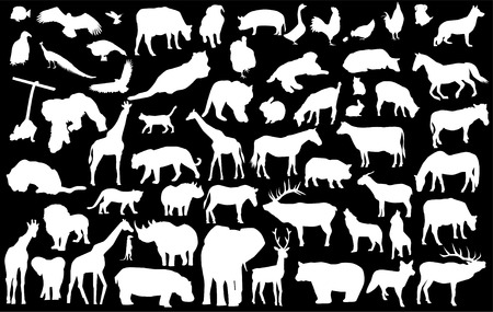 animals and pets: vector white different animals silhouettes