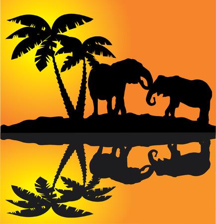 Vecteur de paysage africain avec les éléphants et de réflexion Banque d'images - 8891969