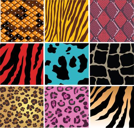 dier en snake skin