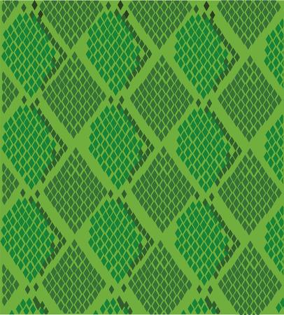녹색 뱀 피부