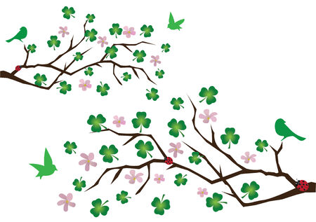 clovers: vector branches with shamrock , green birds and ladybugs Illustration