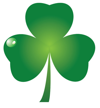 four leaf clovers: vector shamrock Illustration