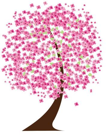 벚꽃의 꽃 일러스트