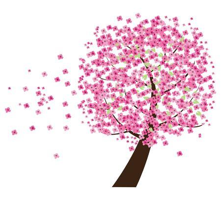 cherry tree: cherry tree in the wind
