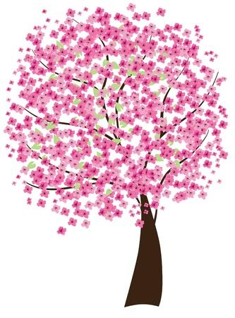vector cherry tree in blossom Ilustração