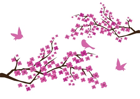 Pflaumenblüte mit Vögeln Standard-Bild - 9580030