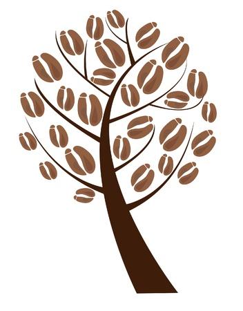 arbol de cafe: �rbol de caf� con granos de caf� Vectores