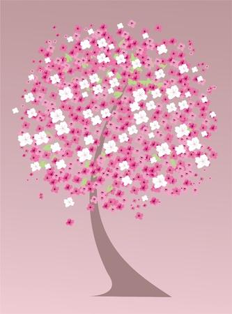cherry tree in blossom Illustration
