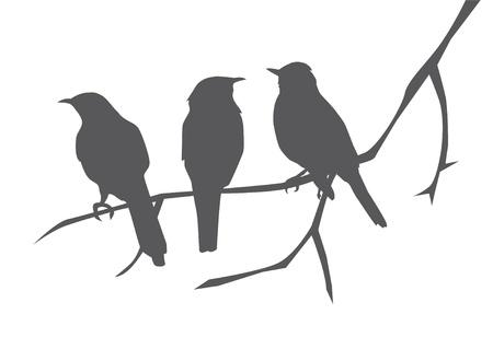 oiseau dessin: silhouettes d'oiseaux sur la branche Illustration