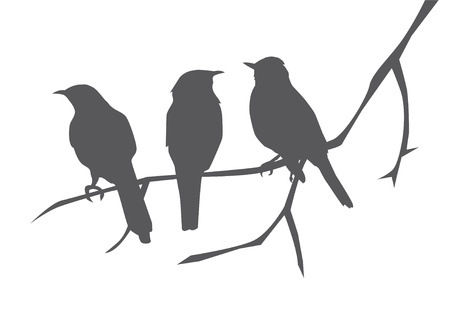 zwerm vogels: vogels silhouetten op de tak