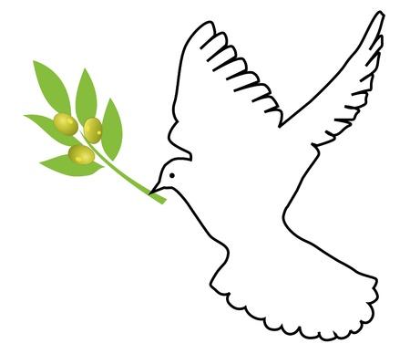 fondos religiosos: vector de paloma con la rama de olivo