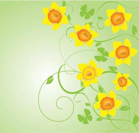 springtime: vector daffodil frame with butterflies