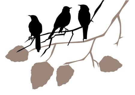 シルエット枝に鳥のベクトル