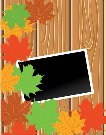 wood with blank photo and maple leaves Vector