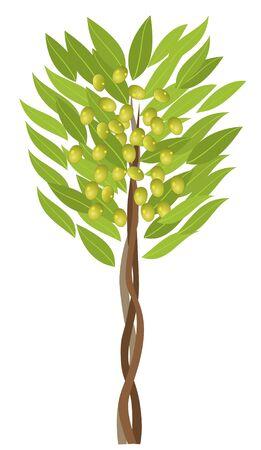 olive tree Ilustração