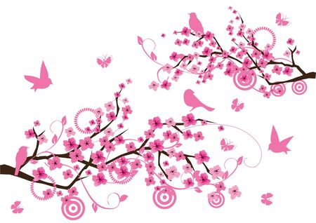 sakura branches with birds