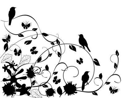 cadre noir et blanc: fond floral avec des oiseaux