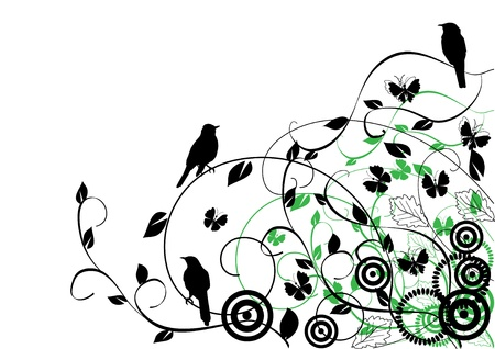 scroll border: floral background with birds