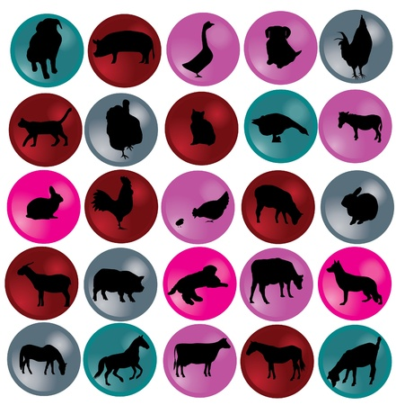 農場の動物とボタン  イラスト・ベクター素材