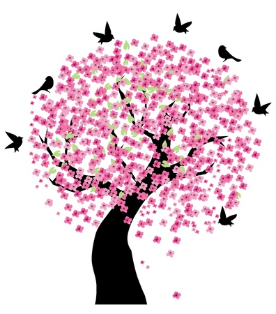cherry tree in blossom Illustration