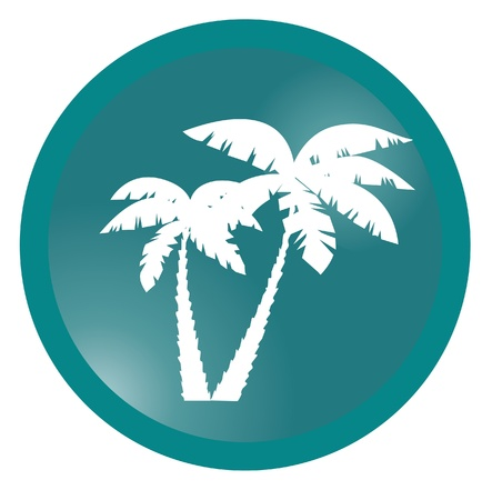 silhouettes: vector palm silhouettes Illustration