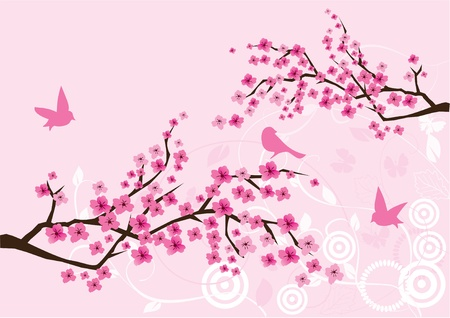 vector blossom branches with birds