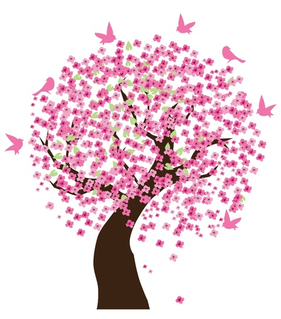 vector cherry tree in blossom with birds Vector