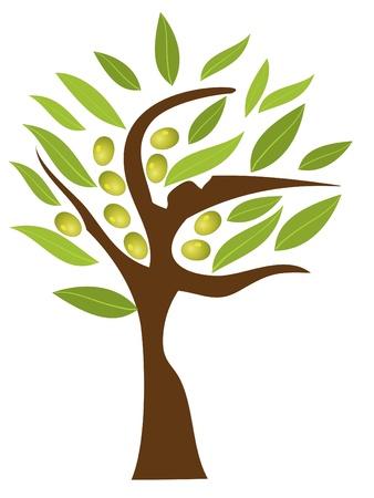 olijf: olijfboom Stock Illustratie
