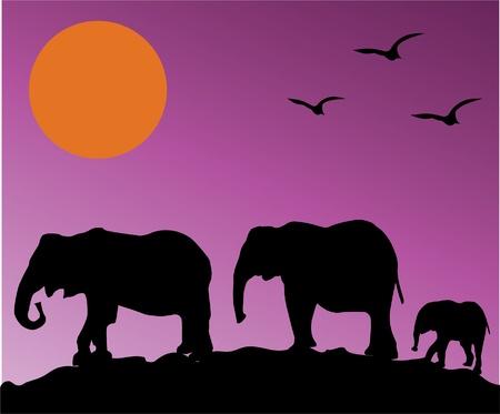 紫の空の上の象のシルエット