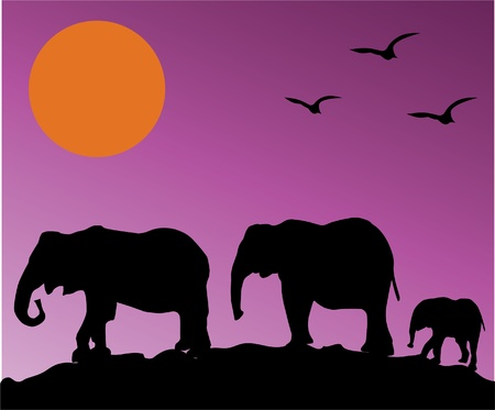 silhouettes of elephants over purple sky