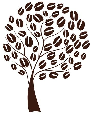 Kaffee-Baum Standard-Bild - 10419112