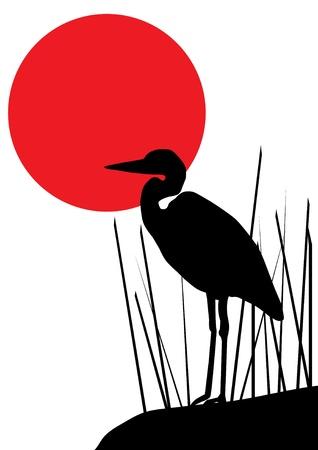 herons: vector heron silhouette
