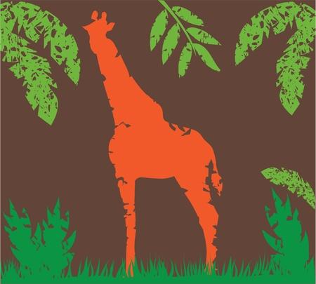 grunge giraffe Banco de Imagens - 10637879