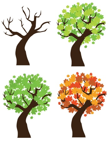 vector maple tree set Stock Vector - 10953299