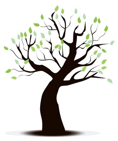 Vector tree Illusztráció
